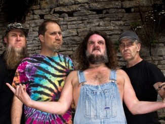 "NEW ALBUM FROM HAYSEED DIXIE: ""HAIR DOWN TO MY GRASS"""