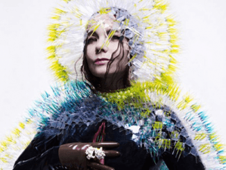 Bjork - Top Ten Ranked Björk