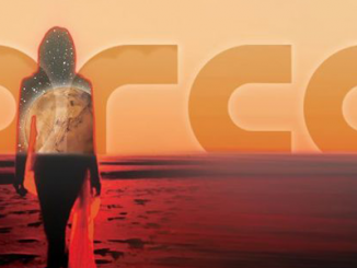 TRACK OF THE DAY: ORCA - AMBER - (Watch Video)