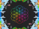 COLDPLAY - announce new album 'A HEAD FULL OF DREAMS' - Listen to track