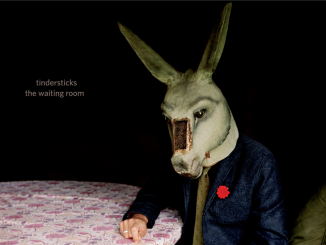 ALBUM REVIEW: TINDERSTICKS - THE WAITING ROOM