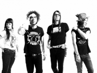 "THE DANDY WARHOLS share new song ""STYGGO"" from 'Distortland' 3"