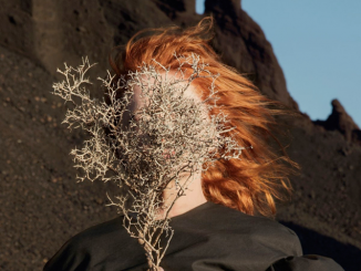 Album Review: Goldfrapp – Silver Eye
