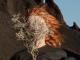 Album Review: Goldfrapp – Silver Eye