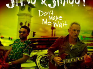 "STING & SHAGGY unveil New Video for ""Don't Make Me Wait"" - Watch Now!"