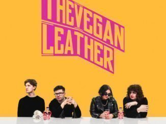 The Vegan Leather