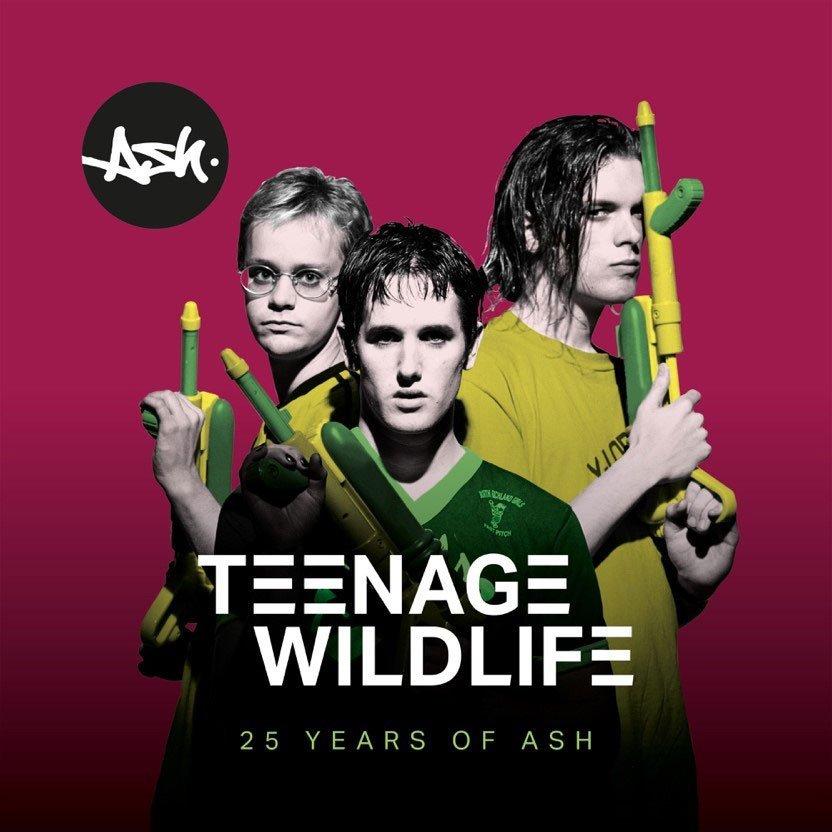 Teenage Wildlife:25 Years Of Ash