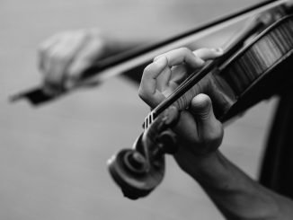 Guide in Choosing Your First Stringed Instrument
