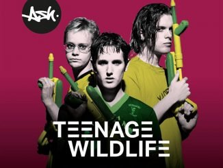 INTERVIEW: Tim Wheeler on Teenage Wildlife: 25 Years Of Ash 3