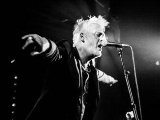 INTERVIEW: Alternative legend BABYBIRD discusses new album 'King of Nothing' 1