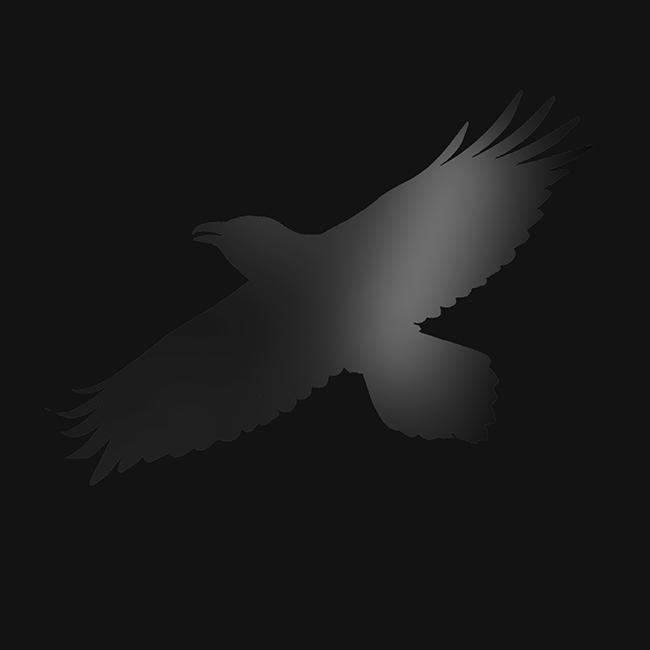 Odin's Raven Magic