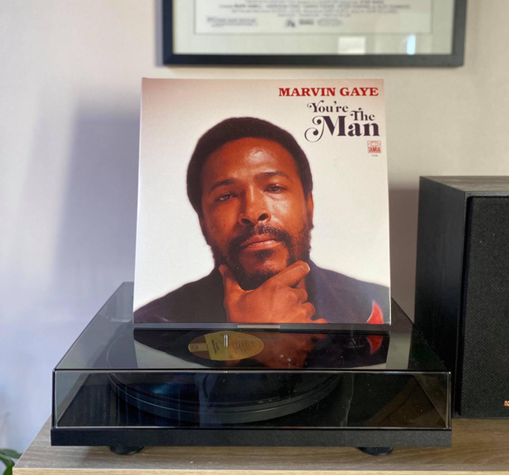 ON THE TURNTABLE: Marvin Gaye - You're The Man