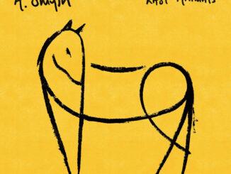 ALBUM REVIEW: A. Smyth - Last Animals