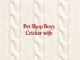 PET SHOP BOYS announce the release of their brand new track 'Cricket Wife' on May 7th Annually