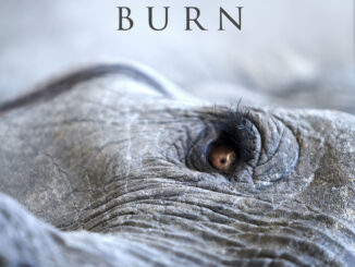 Lisa Gerrard and Jules Maxwell – Burn