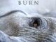 Lisa Gerrard and Jules Maxwell – Burn